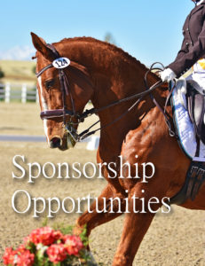Sponsorship Opportunities with Dressage Couture Designs