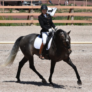 Amber Clark - Sponsored Rider of Dressage Couture Designs